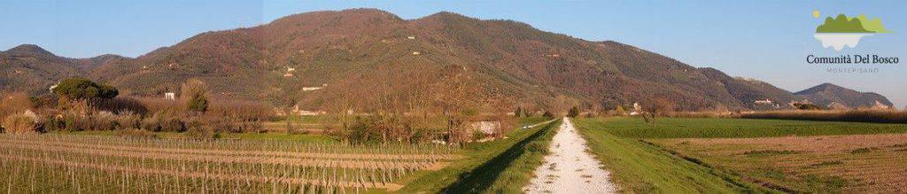Comunità del Bosco Monte Pisano