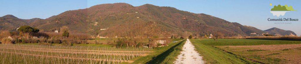 cropped-CDB-cropped-panorama_monte-pisano-web4.jpg