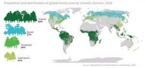 Proporzioni e distrubuzione delle aree forestali globali in funzione dei domini climatici